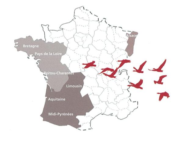 Régions du foie gras