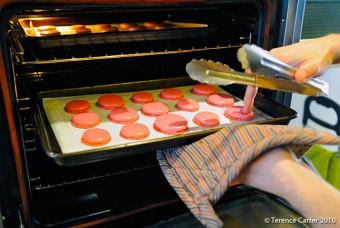 Foie gras mi-cuit : macarons en entrée !